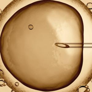Wat is in-vitrofertilisatie?